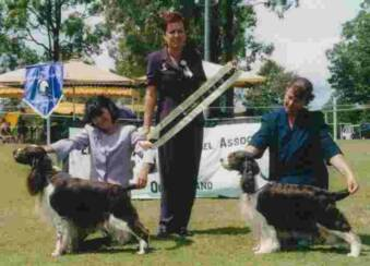 Best in Show ESSAQ March 2001